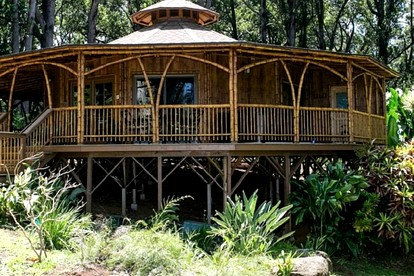 Eco-Friendly Accommodations in Hawaii