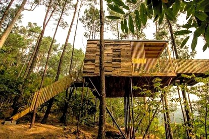 Five-Star Tree Houses in Spain