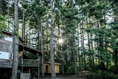 National Forest Tree Houses in Oregon