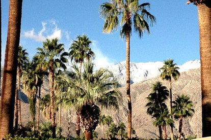 Outdoor Adventure Getaways near Palm Springs