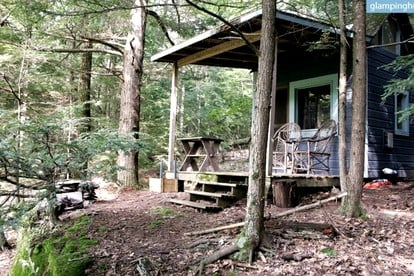 Pet-Friendly Cabin Rentals near NYC