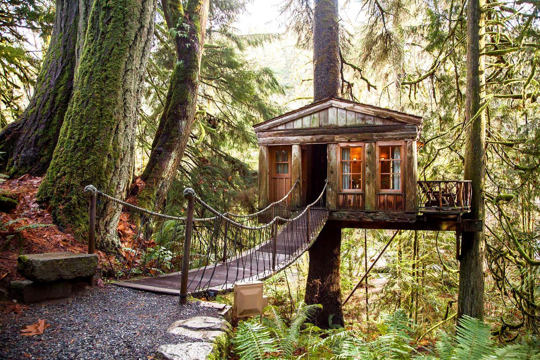 Luxury Tree House Rentals Book The Best Tree House Getaways