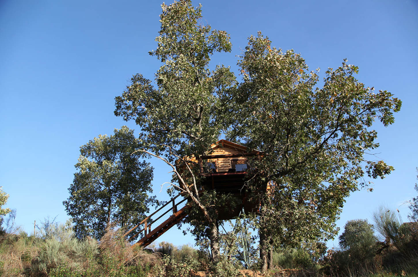 Eco-Friendly Tree House Rental with Breakfast Included in Extremadura, Spain