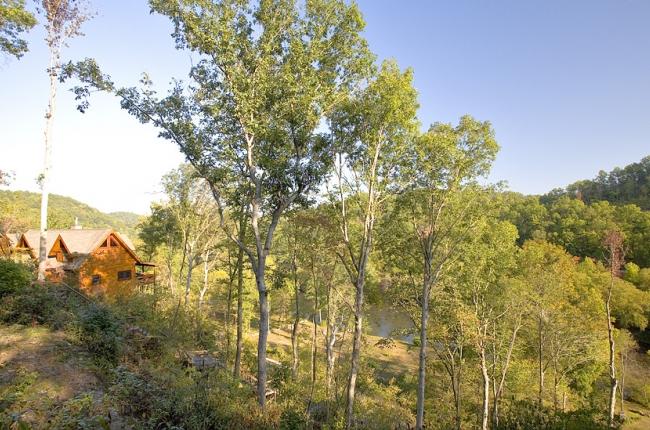 Toccoa River Cabin Rental In Georgia