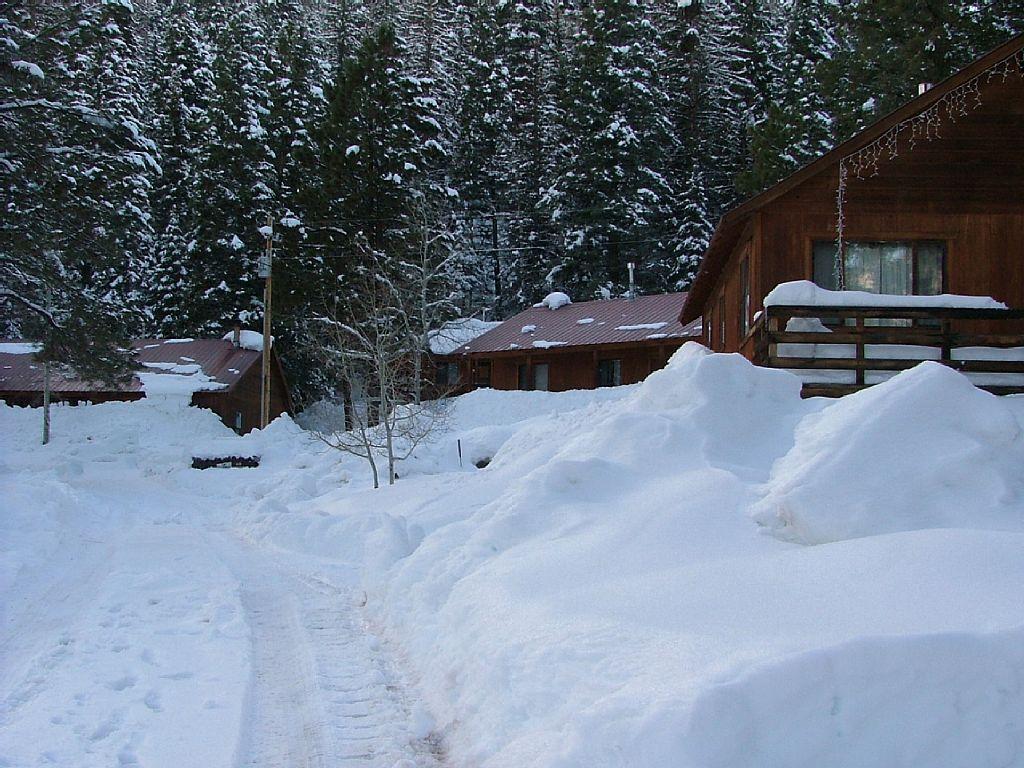 Cabin rental near durango colorado for Cabins to stay in durango colorado