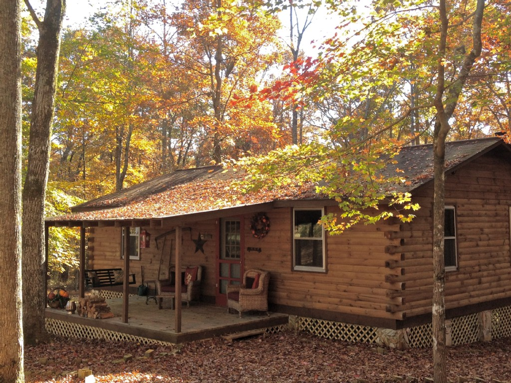 pet friendly cabin near lake lure north carolina