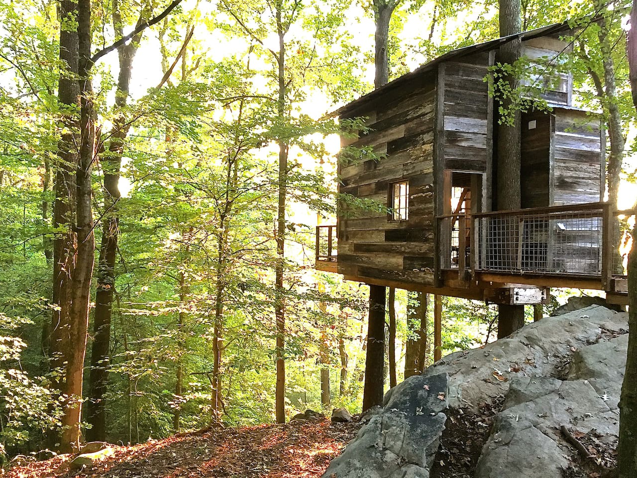 Secluded Tree House near to the Appalachian Mountains, Georgia