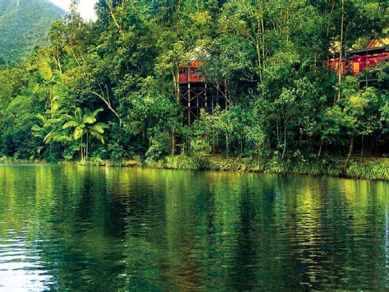 Glamping Rainforest Retreats Down Under
