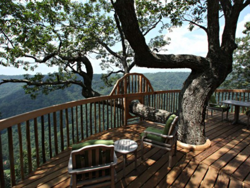 Top Six Selfie-Worthy Tree Houses