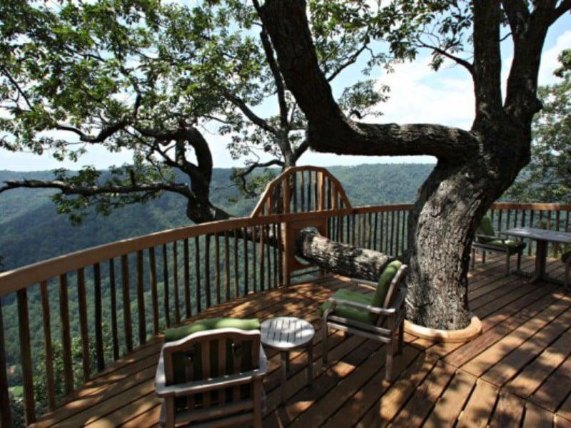 Top Six Selfie-Worthy Tree Houses