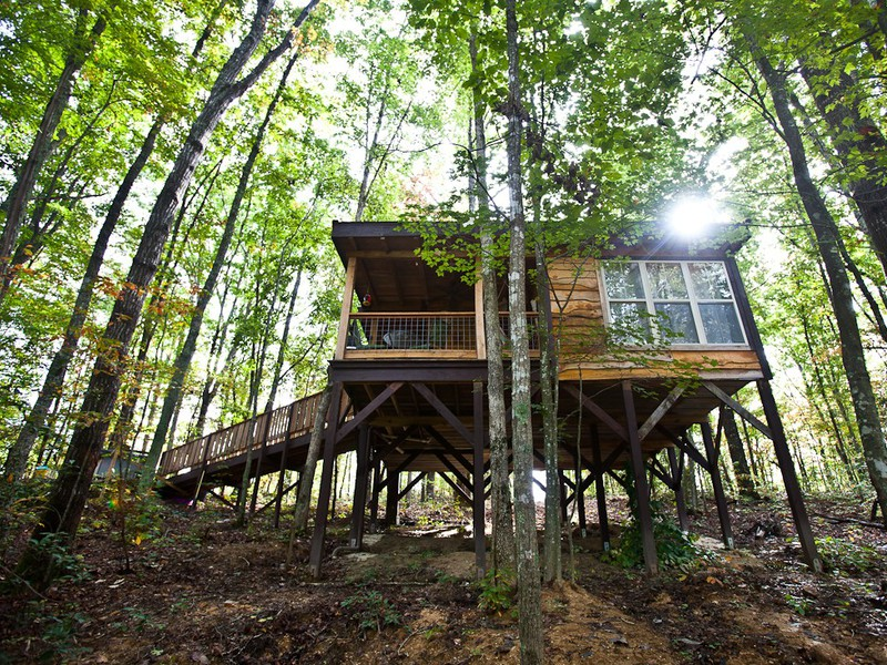 15 Tree Houses for Your Bucket List