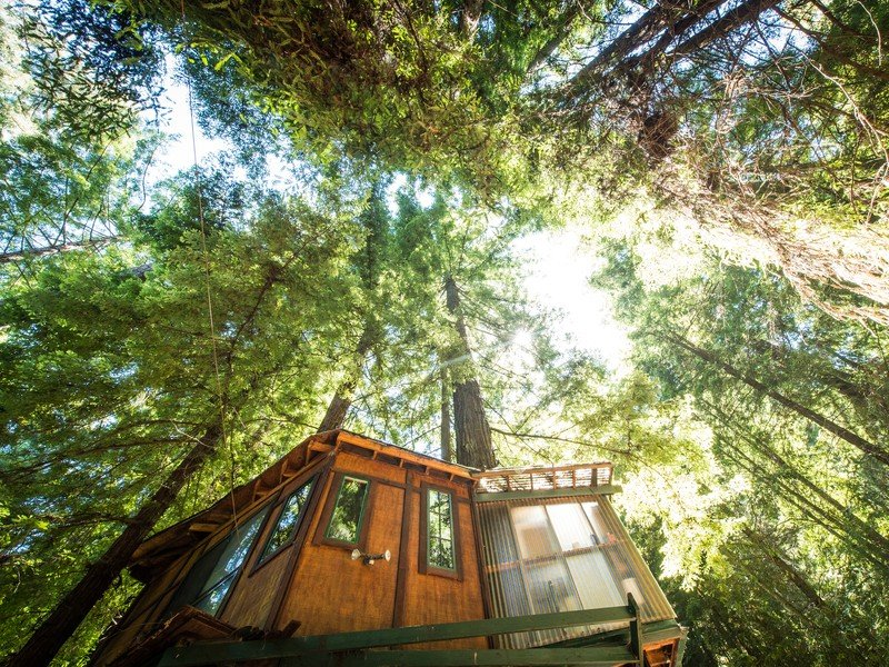 Tree Houses with the Best Views
