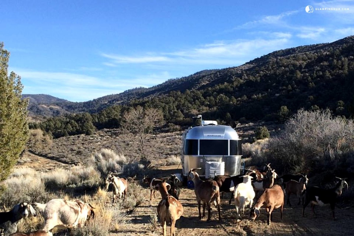 Airstream Rentals near Los Angeles