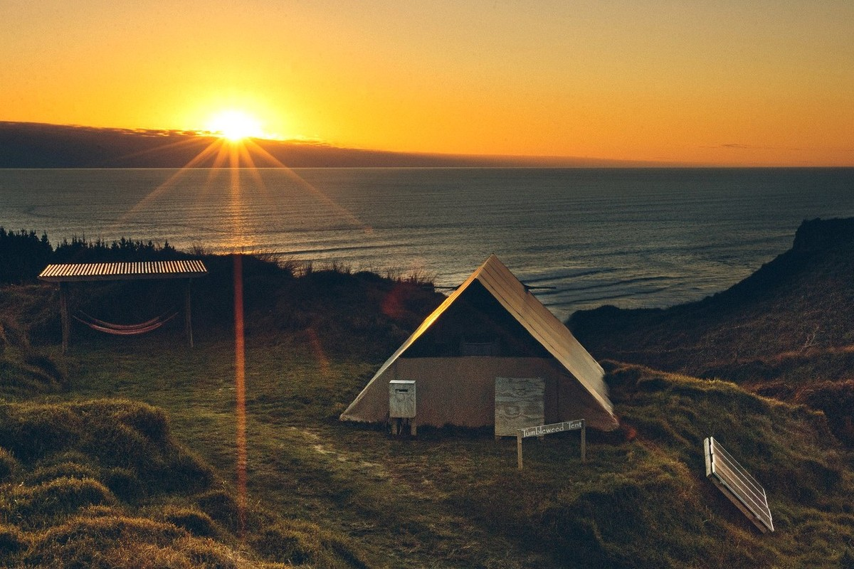 Beachside Getaways in New Zealand