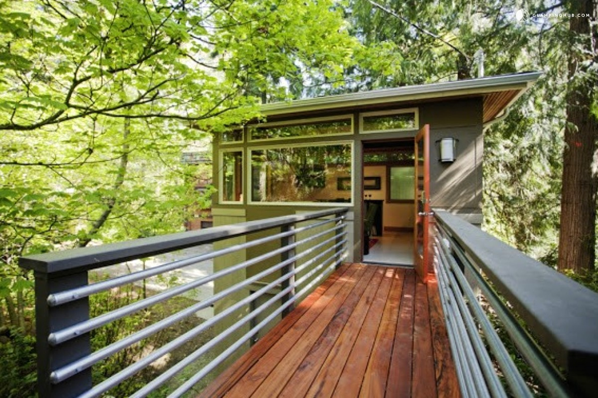 Best Tree-House Camping Northern California