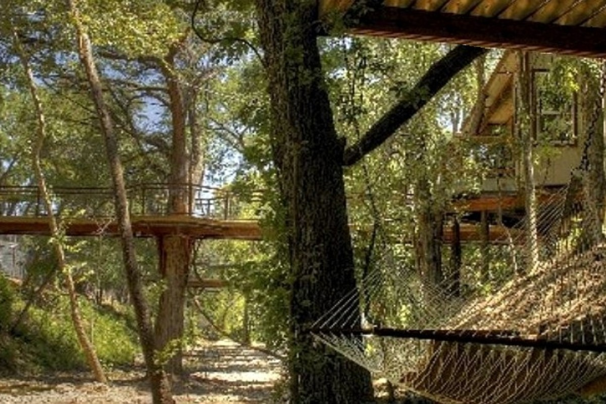 Cool Tree House Hotels around Texas Hill Country