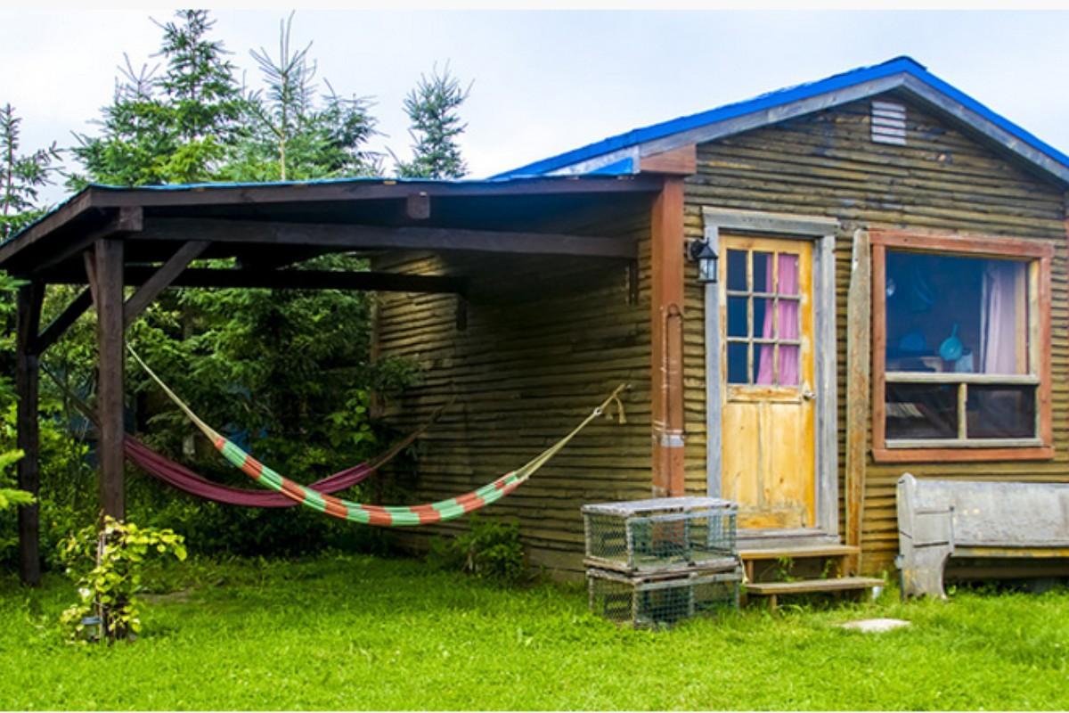 Dog Friendly Cabins Near Ottawa