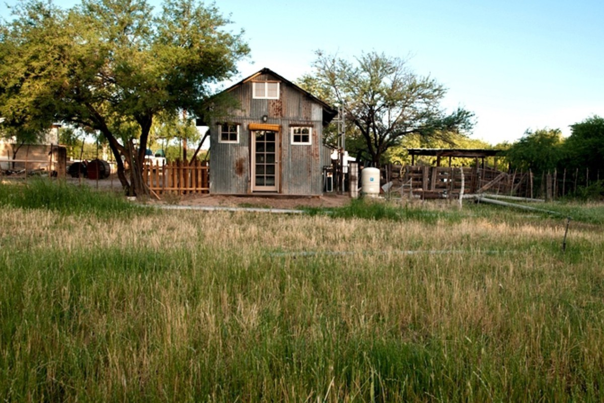 Dog-Friendly Cabins in Arizona