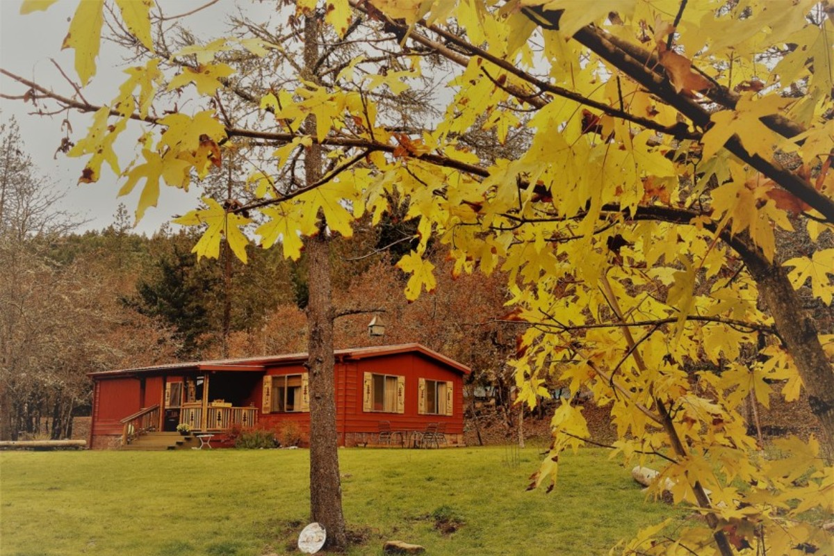 Dog-Friendly Cabins Oregon