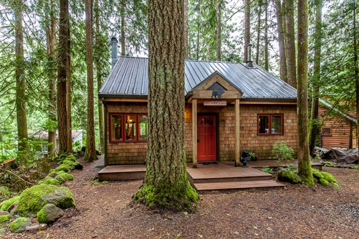 Dog Friendly Cabins Vancouver Island