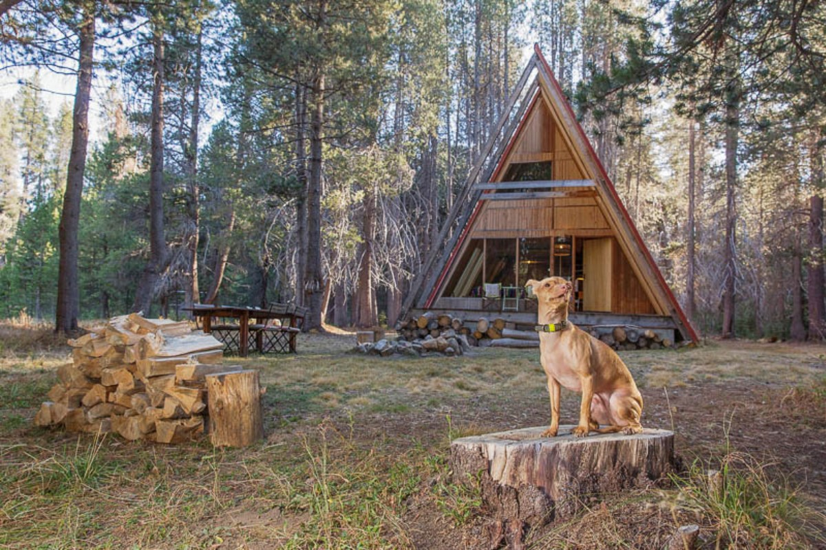 Glamping with Pets in California