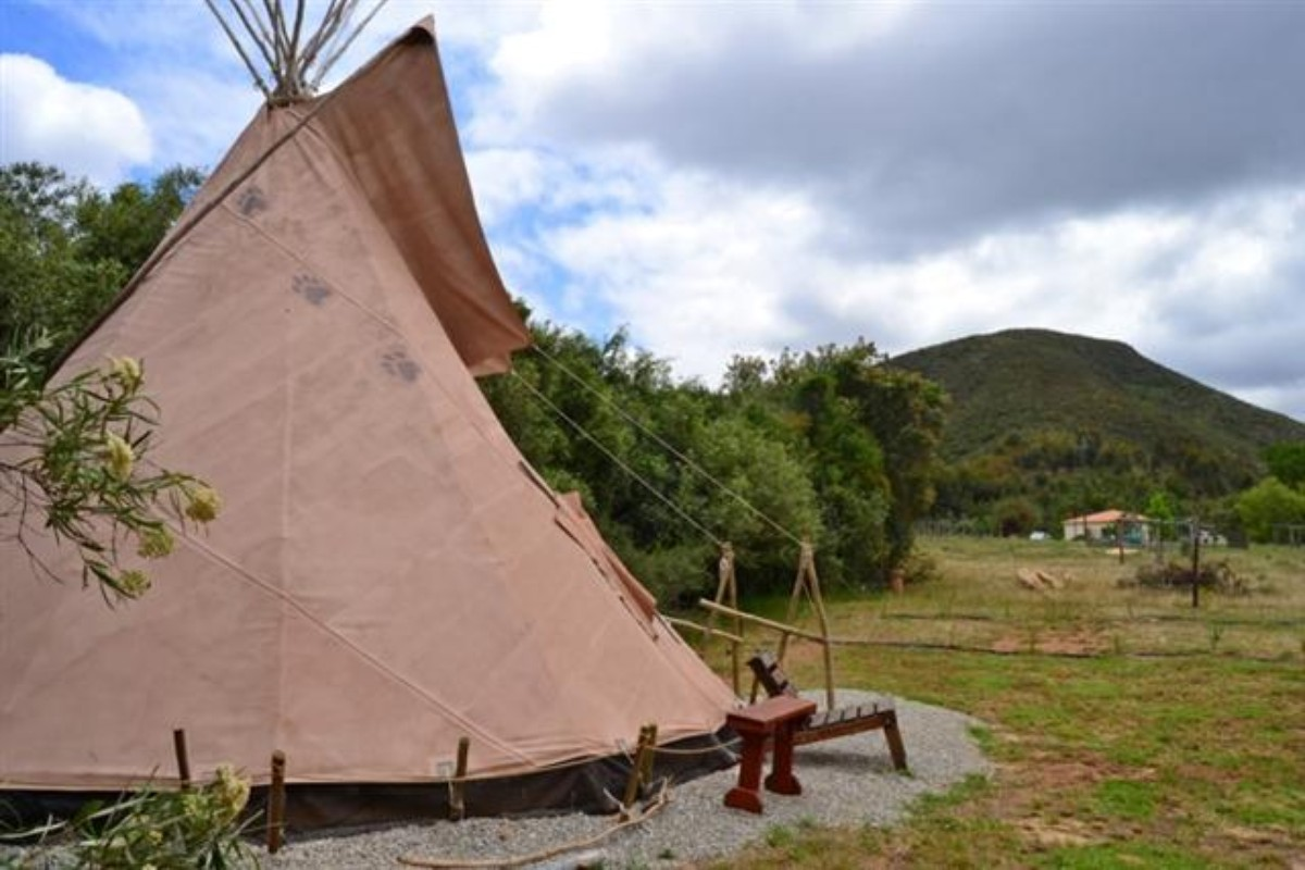 Luxury Tents in The Western Cape, South Africa