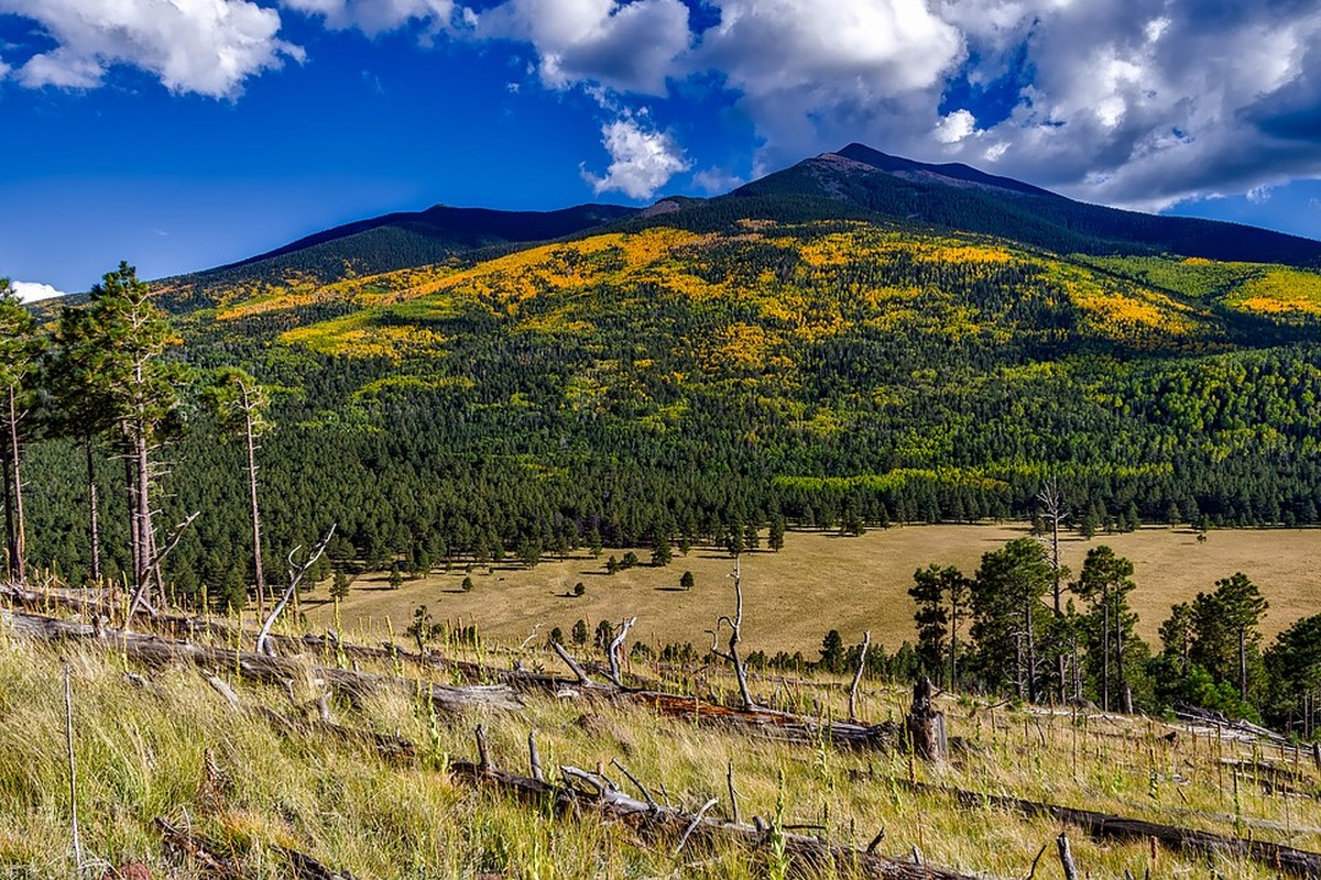Luxury Vacation Rentals near Flagstaff, Arizona