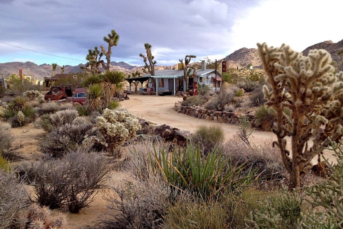 Outdoor Adventure Getaways in Joshua Tree