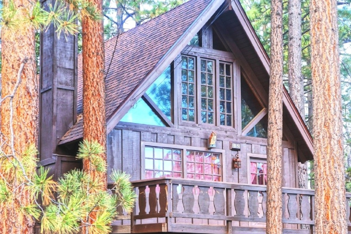 youtube rentals cabin cabins friendly pet big watch bear ca
