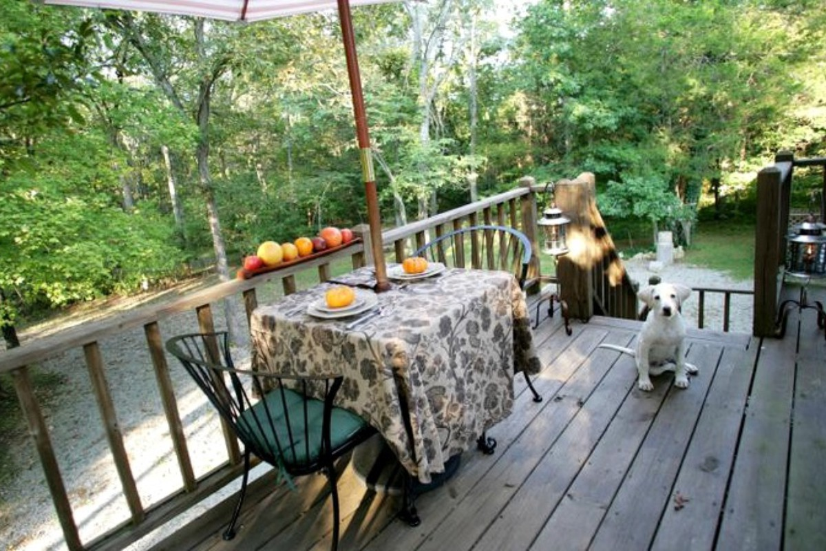 Lake Of The Ozarks Cabins Pet Friendly Pet Friendly