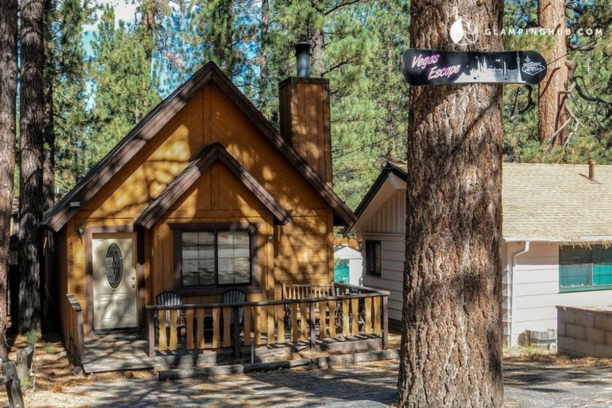enclosure big season perfect rental friendly cabins house dog four bear family vacation pet cottage getaway