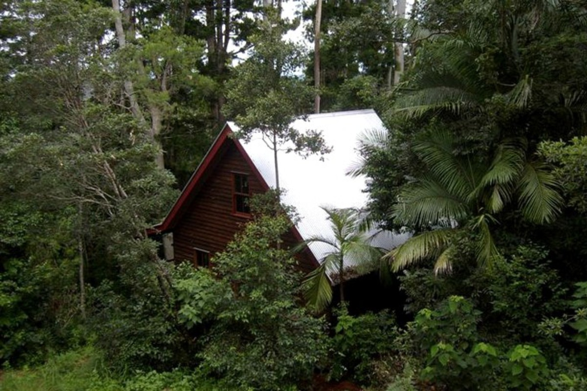 Rainforest Rentals in NSW