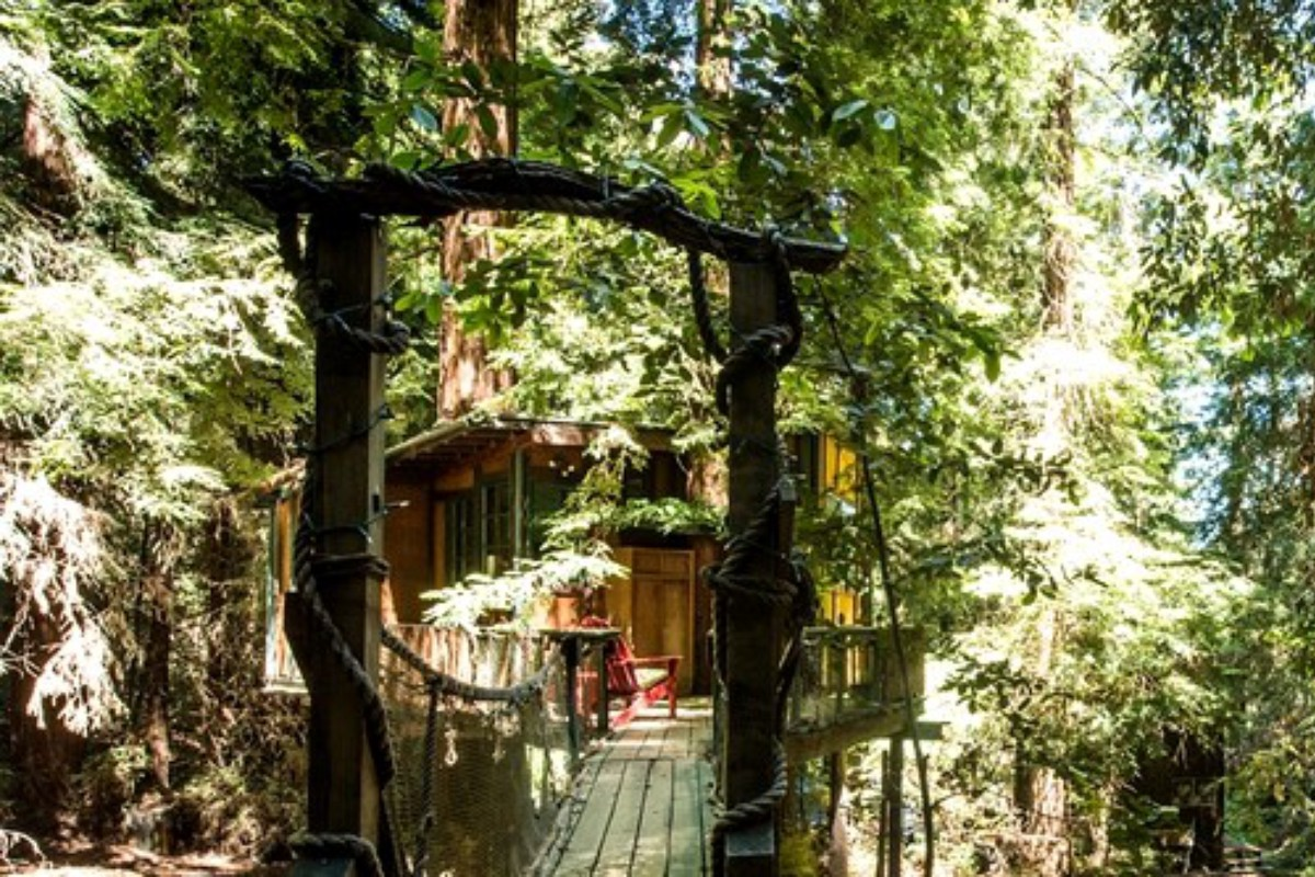 Relaxing Tree House Retreats in the Pacific Northwest