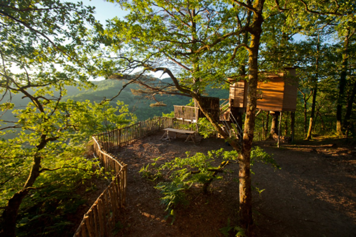Rent a Tree House in France