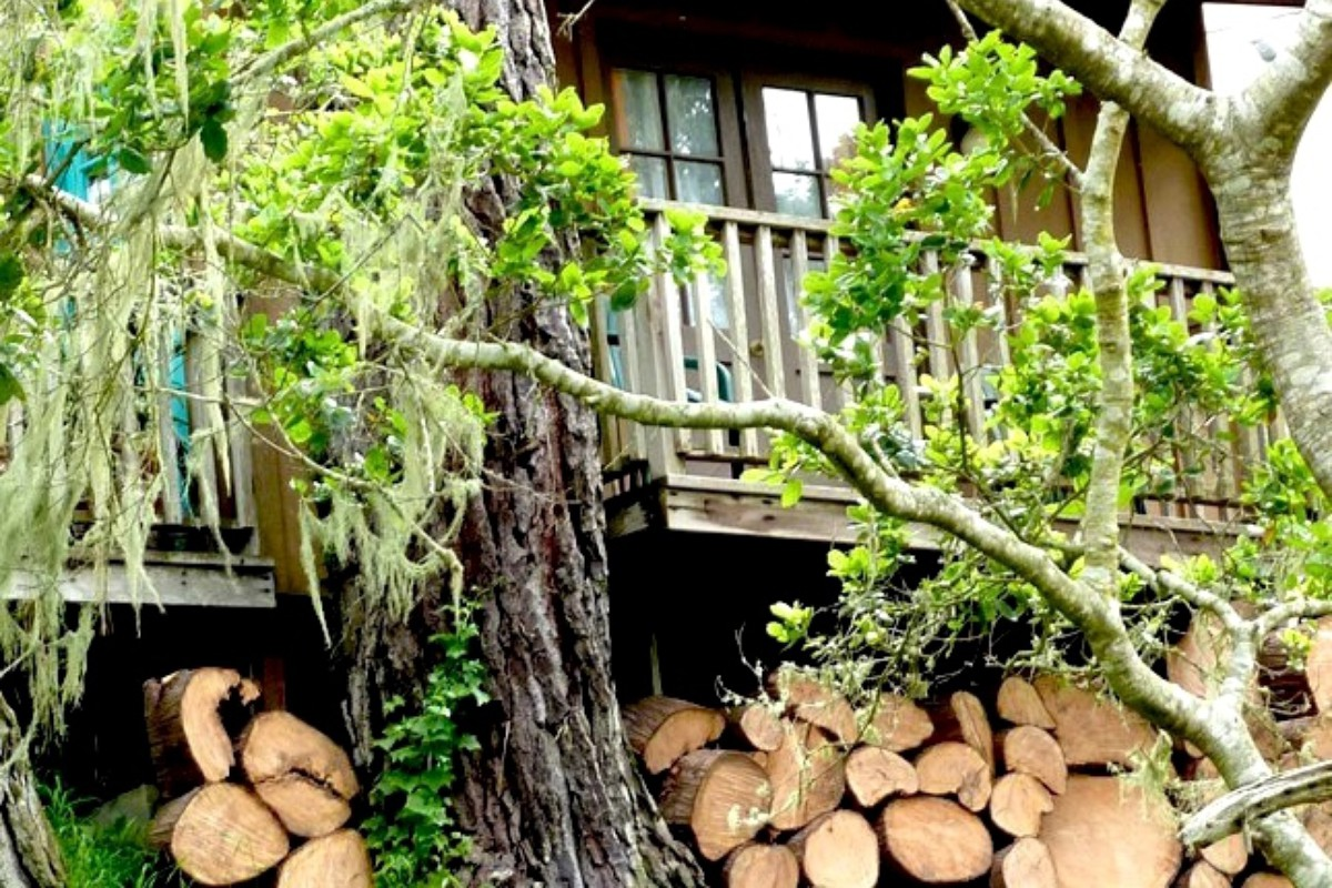 Romantic Tree House Getaways in the Pacific Northwest