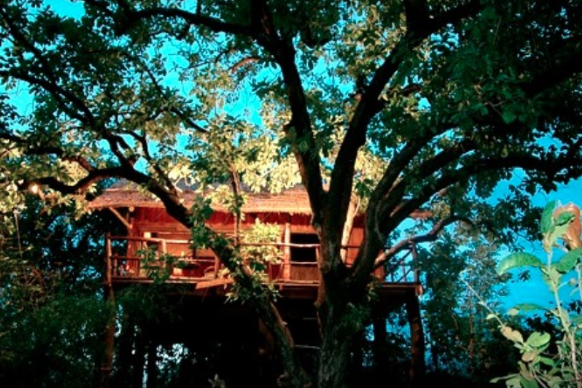 Secluded Treehouses Around the World