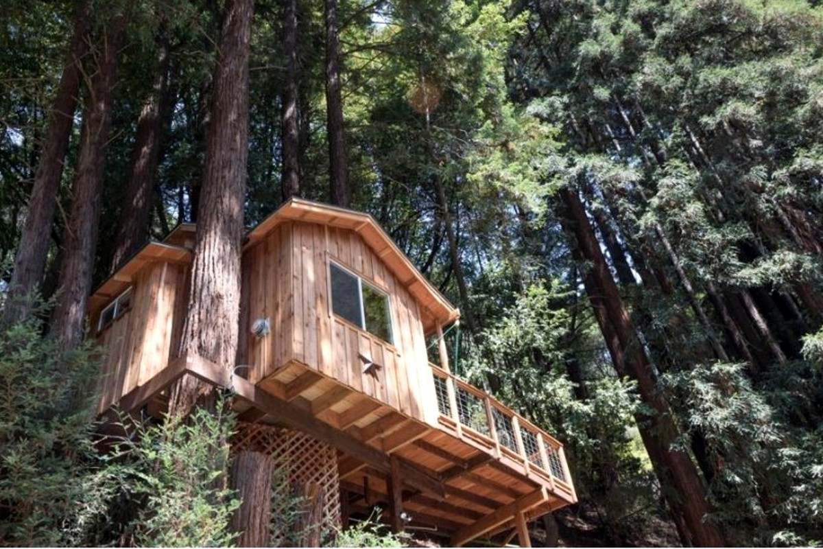 Tree House Camping with Kids near Sacramento