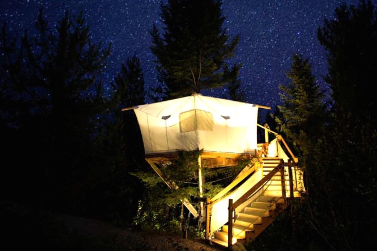 Tree House Getaways in Montana