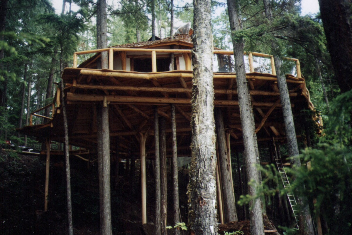 Tree House Hotels in Montana