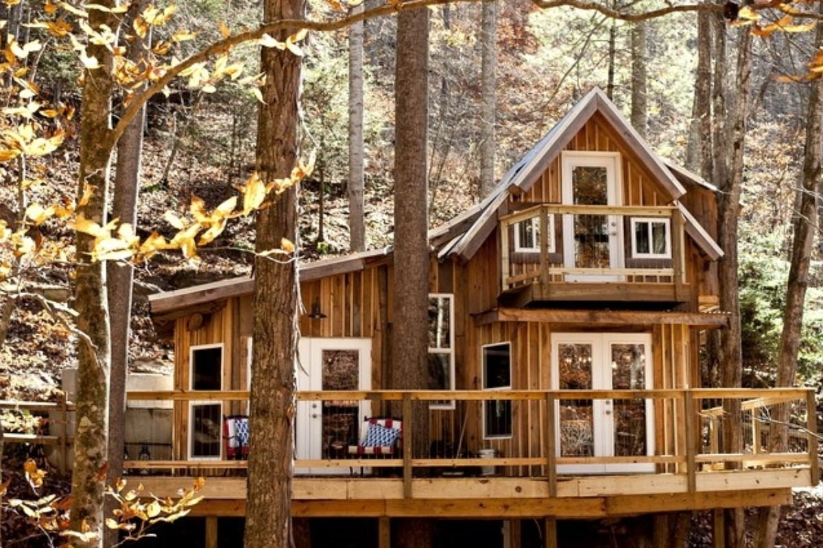 Tree House Hotels near Pisgah National Forest