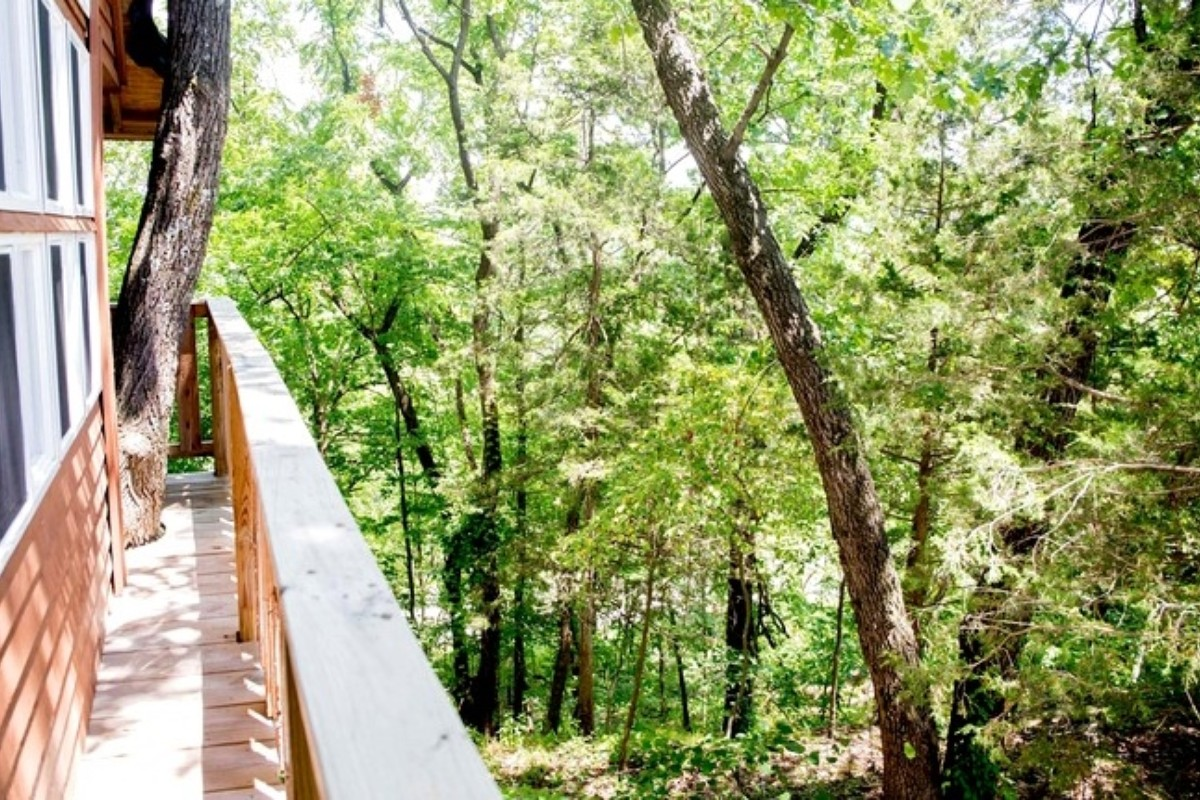Tree House Hotels with Wi-Fi in the USA