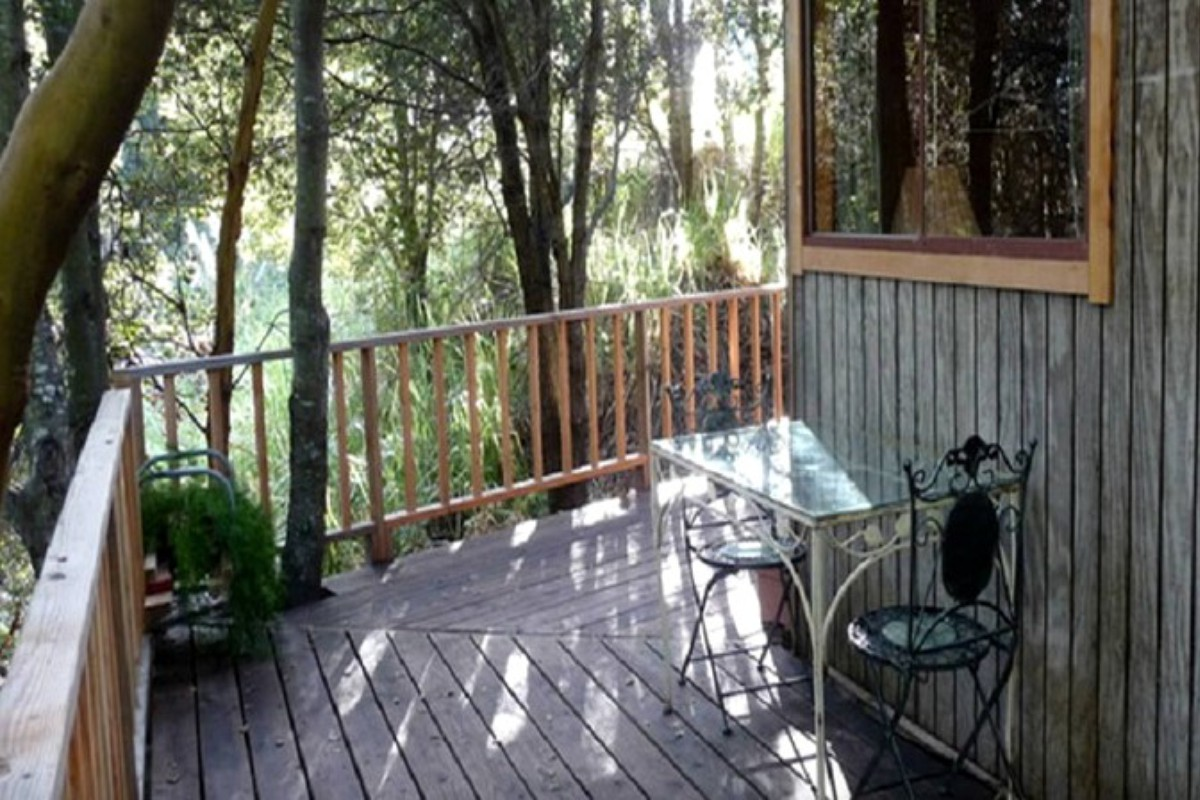 Tree House Rentals near the Bay Area