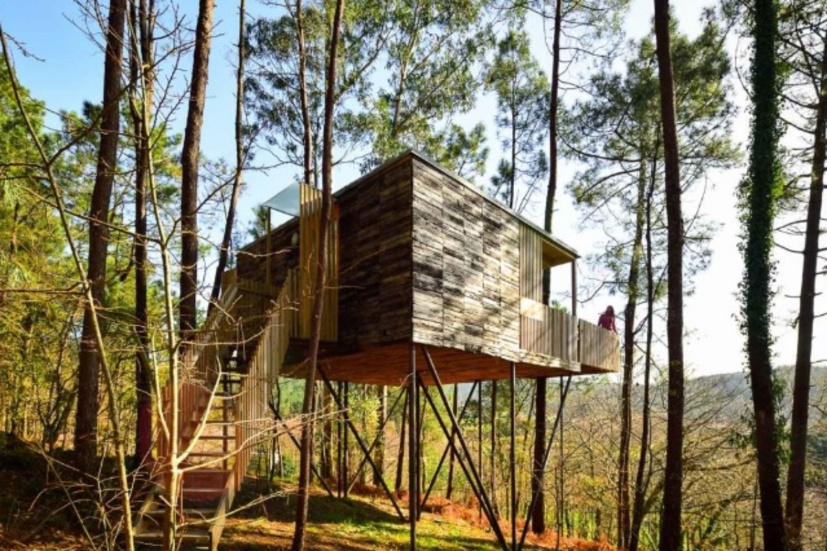 Tree Houses Rated by the Top