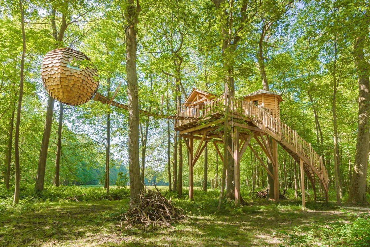Pet-Friendly Tree Houses