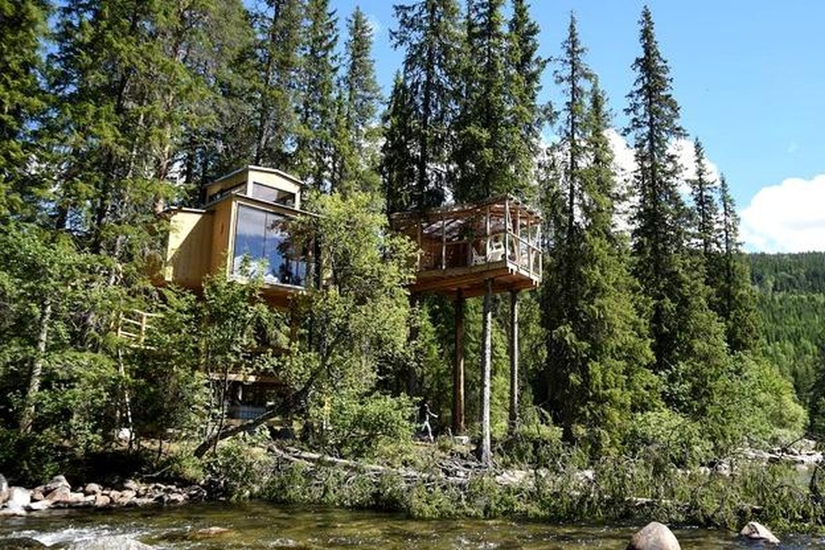 Treehouses on the West Coast