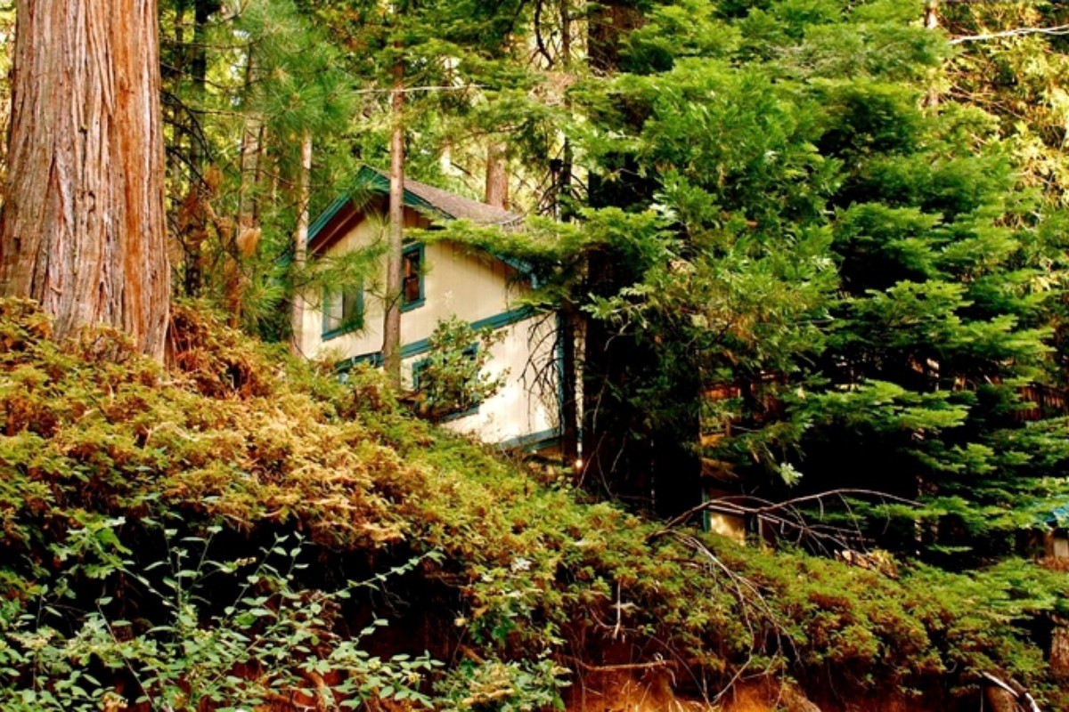 Treetop Getaways in Northern California