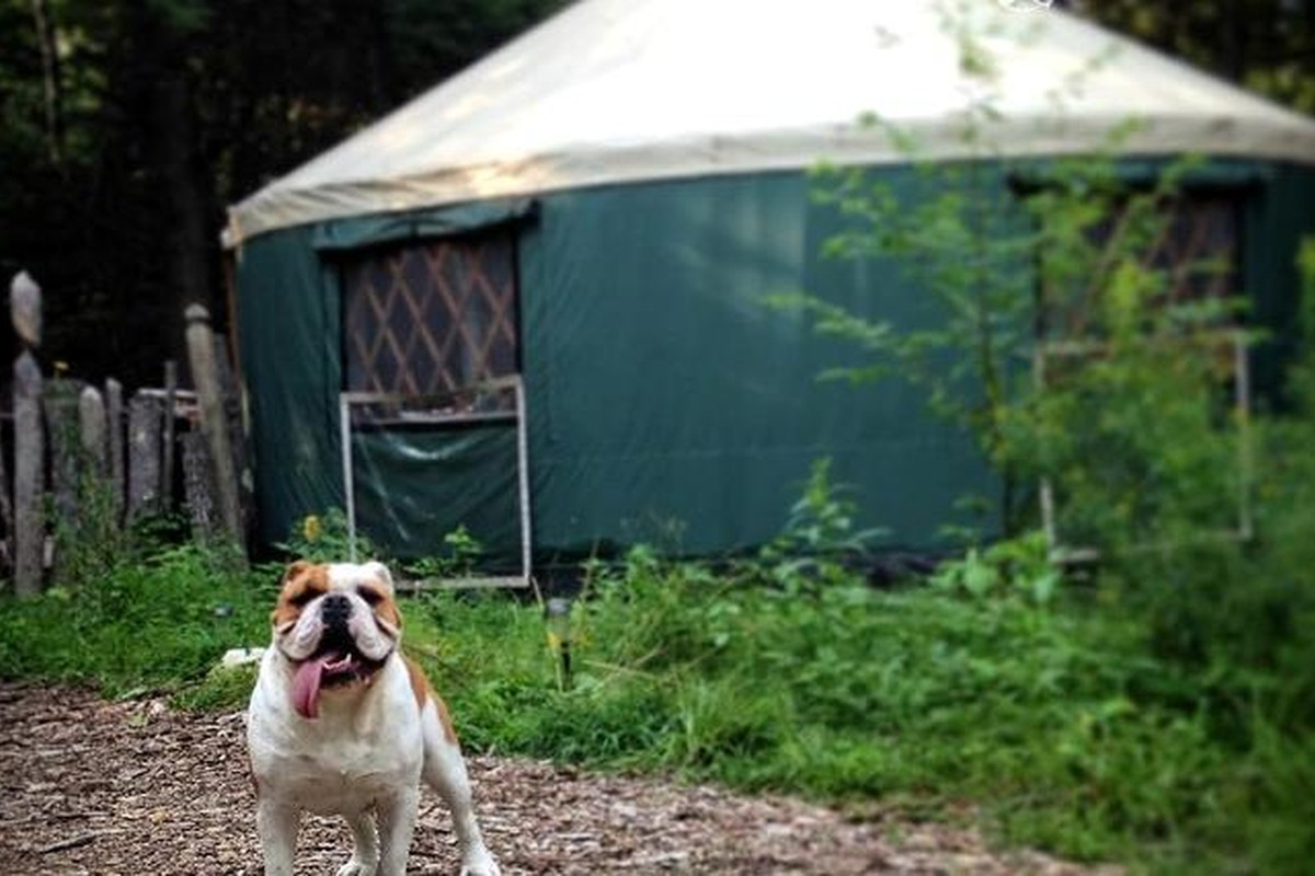 Yurts in New England